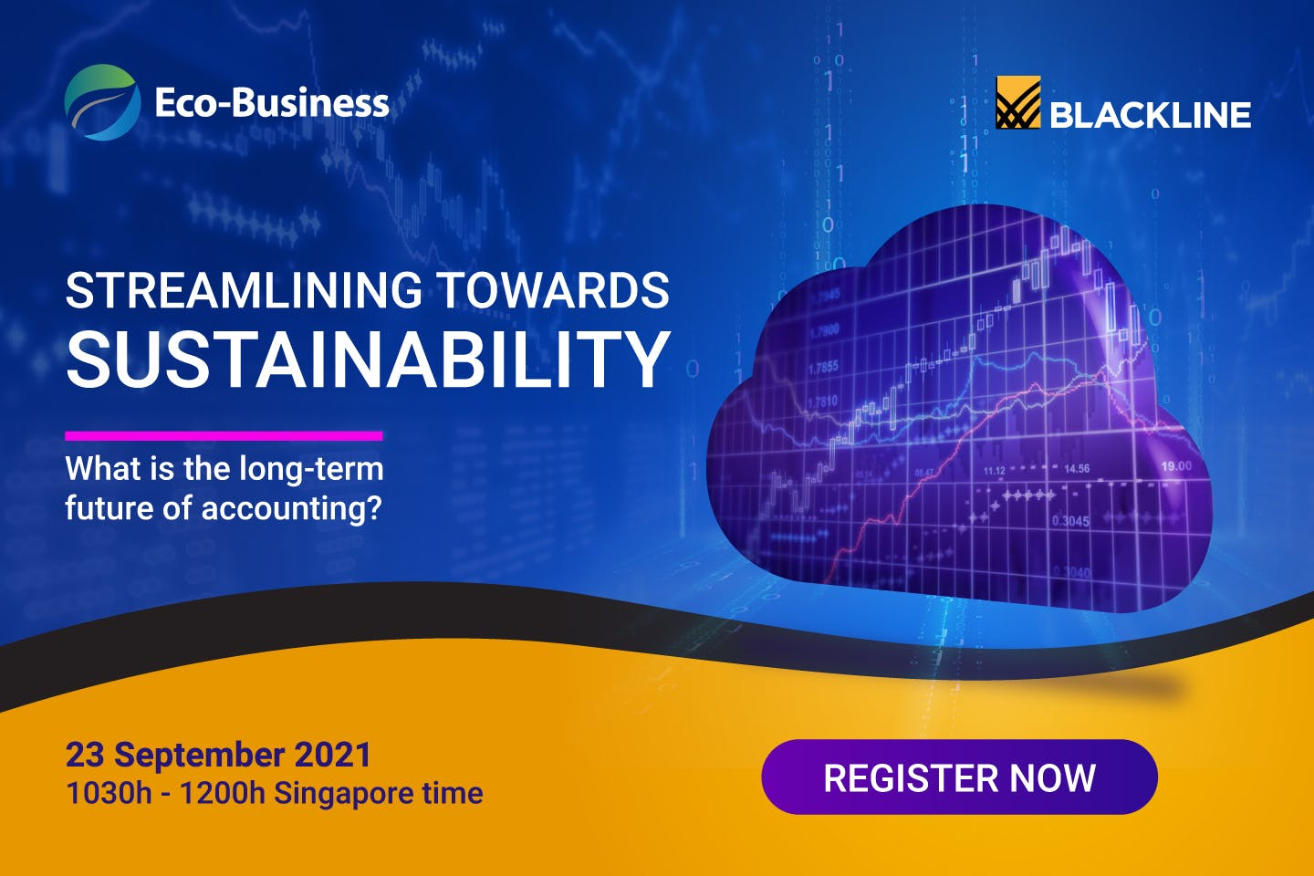 Streamlining towards sustainability: what is the long-term future of accounting?