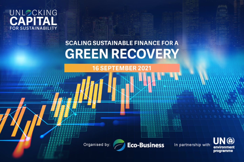Unlocking capital for sustainability 2021