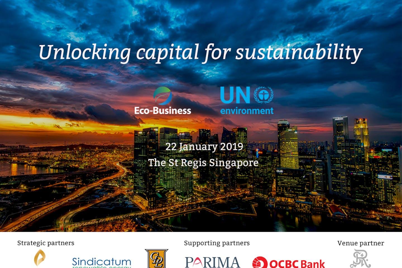 Unlocking capital for sustainability 2019
