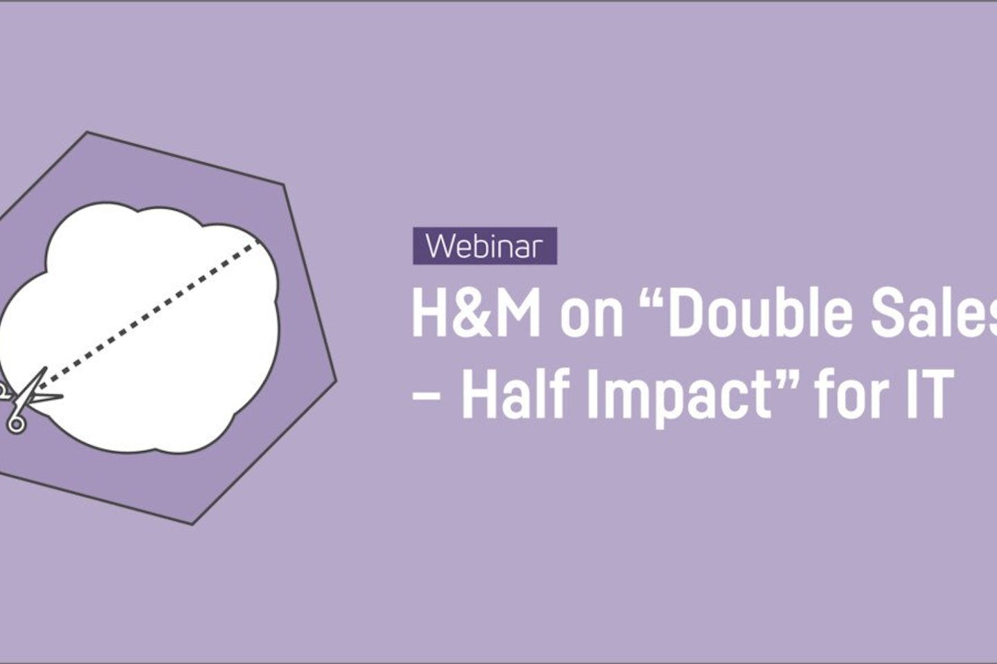 """Webinar: H&M on """"Double Sales – Half Impact"""" for IT"""