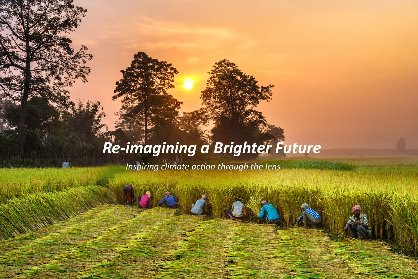 Re-imagining a Brighter Future: A Olam & Eco-Business Photo Challenge