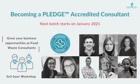 Becoming a PLEDGE™ Accredited Consultant