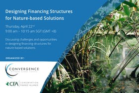 Designing financing structures for nature-based solutions