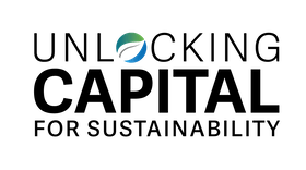 Unlocking Capital for Sustainability 2020
