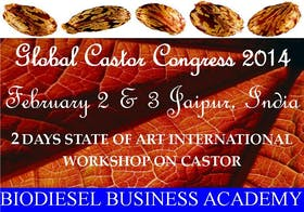 2 Days Global Castor Integrated Nonfood Biodiesel Farming & Technology Training Programme 2014