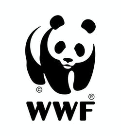 The Digital Age of Wildlife Trafficking in Southeast Asia