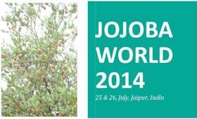 Global JOJOBAWORLD 2014
