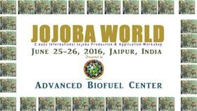 Global JOJOBAWORLD 2016