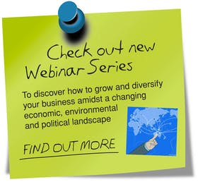 How to grow and diversify your business and economy