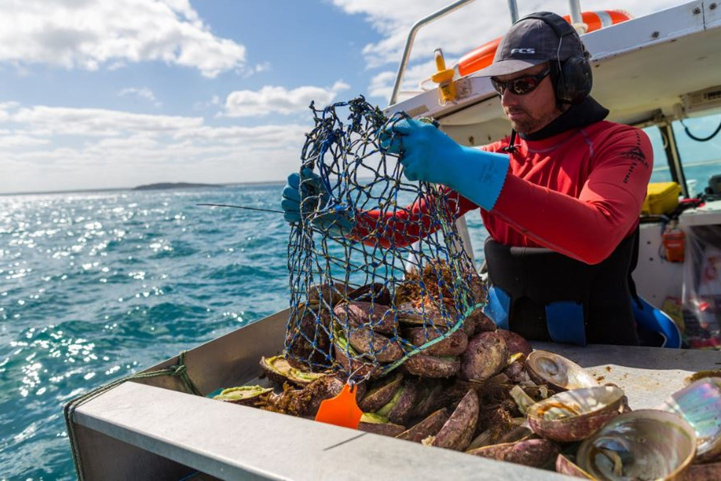 Australian fisheries seeking sustainability certification largely driven by social responsibility
