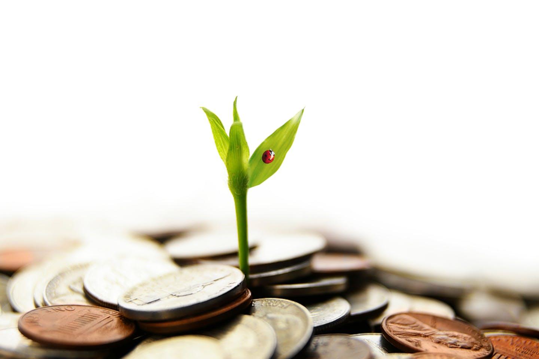 Enterprise Singapore launches Enterprise Sustainability Programme to support enterprises