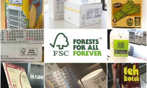 FSC reaches APAC certificates milestones: Over 10,000 Chain of Custody certificates now in the region