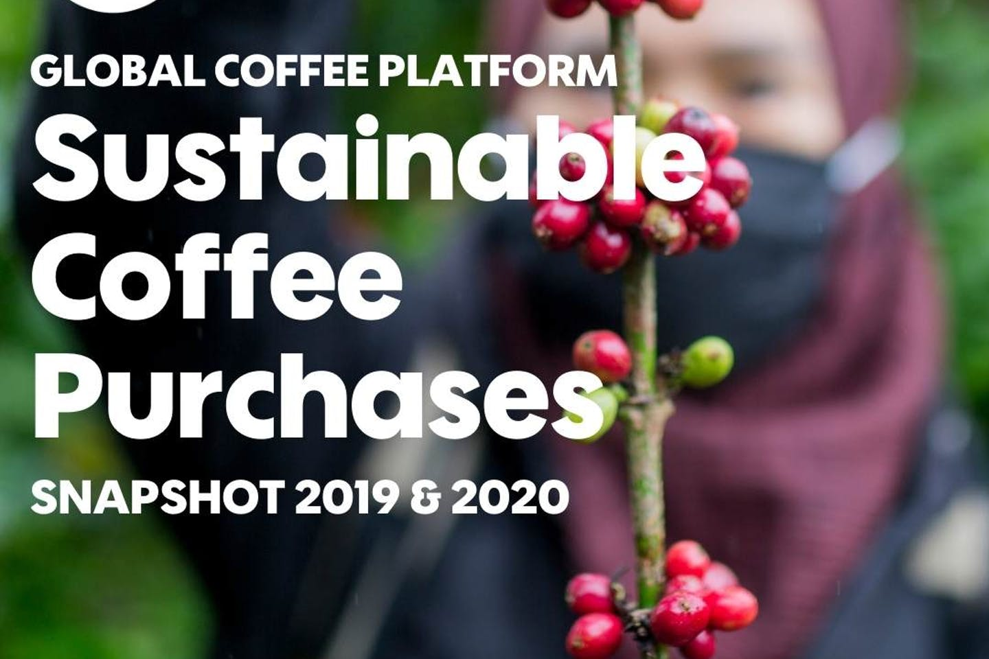 JDE Peet's, Melitta Group, and Nestlé share progress with sustainability in Global Coffee Platform Report