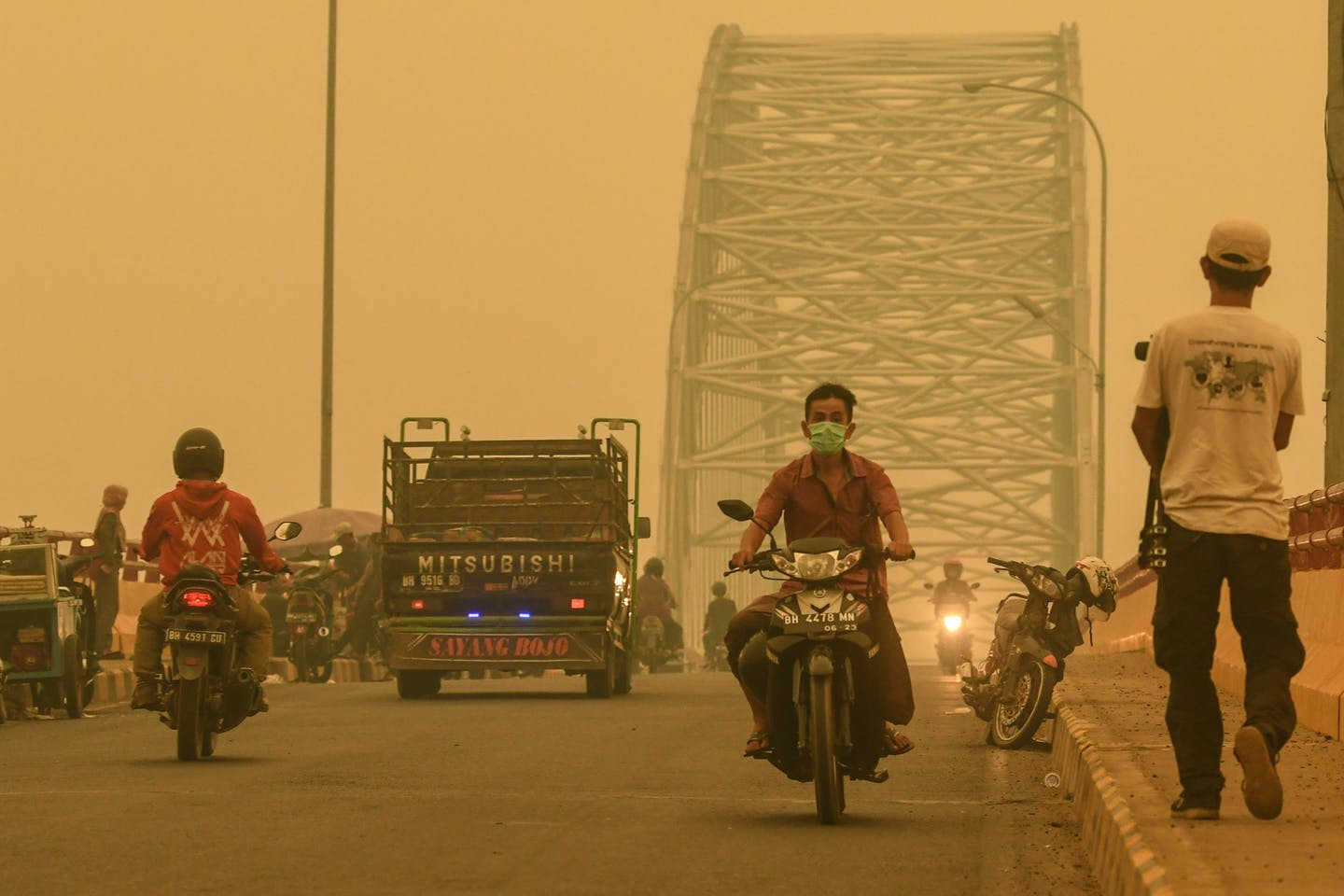 Palm oil and pulp companies with most burned land go unpunished as Indonesian forest fires rage