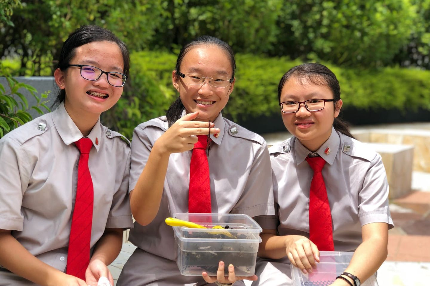 Sixty per cent of Singapore's Students Mobilised to Save the Environment