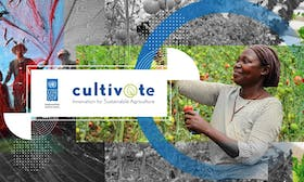 Cultiv@te – Innovation for Sustainable Development