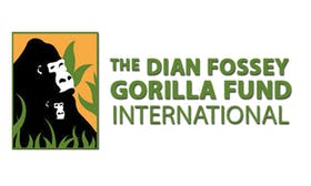 Dian Fossey Gorilla Fund announce new collaboration for carbon-neutral PERL NFTs