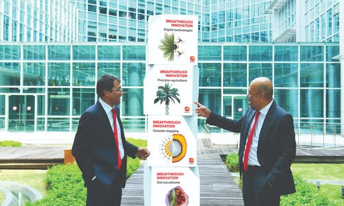 Sime Darby Plantation publishes its oil palm genome to support the company's ambition for a deforestation-free industry