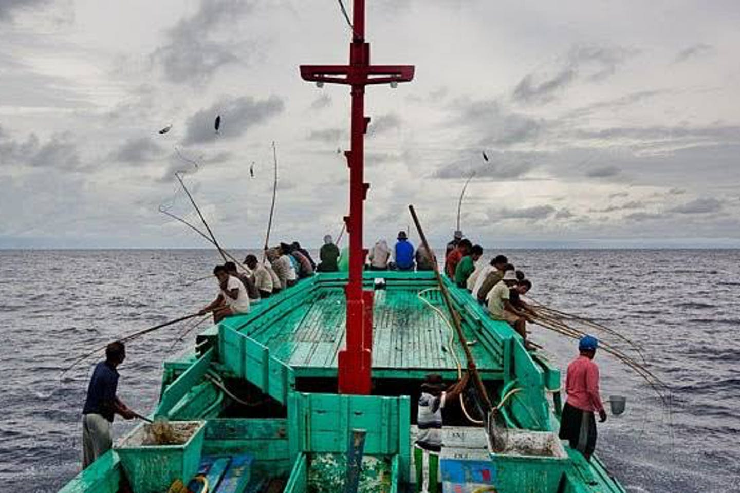 First Indonesia tuna fishery achieves MSC Certification
