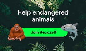 Eco-fintech startup Zelf launches an initiative helping WWF to save endangered species