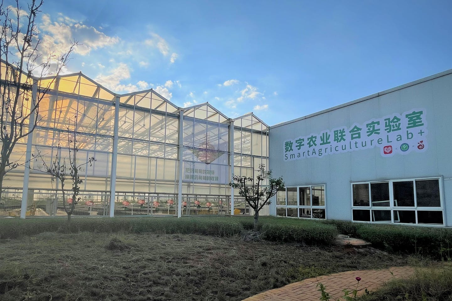 Four teams make the cut of Pinduoduo's Smart Agriculture Competition