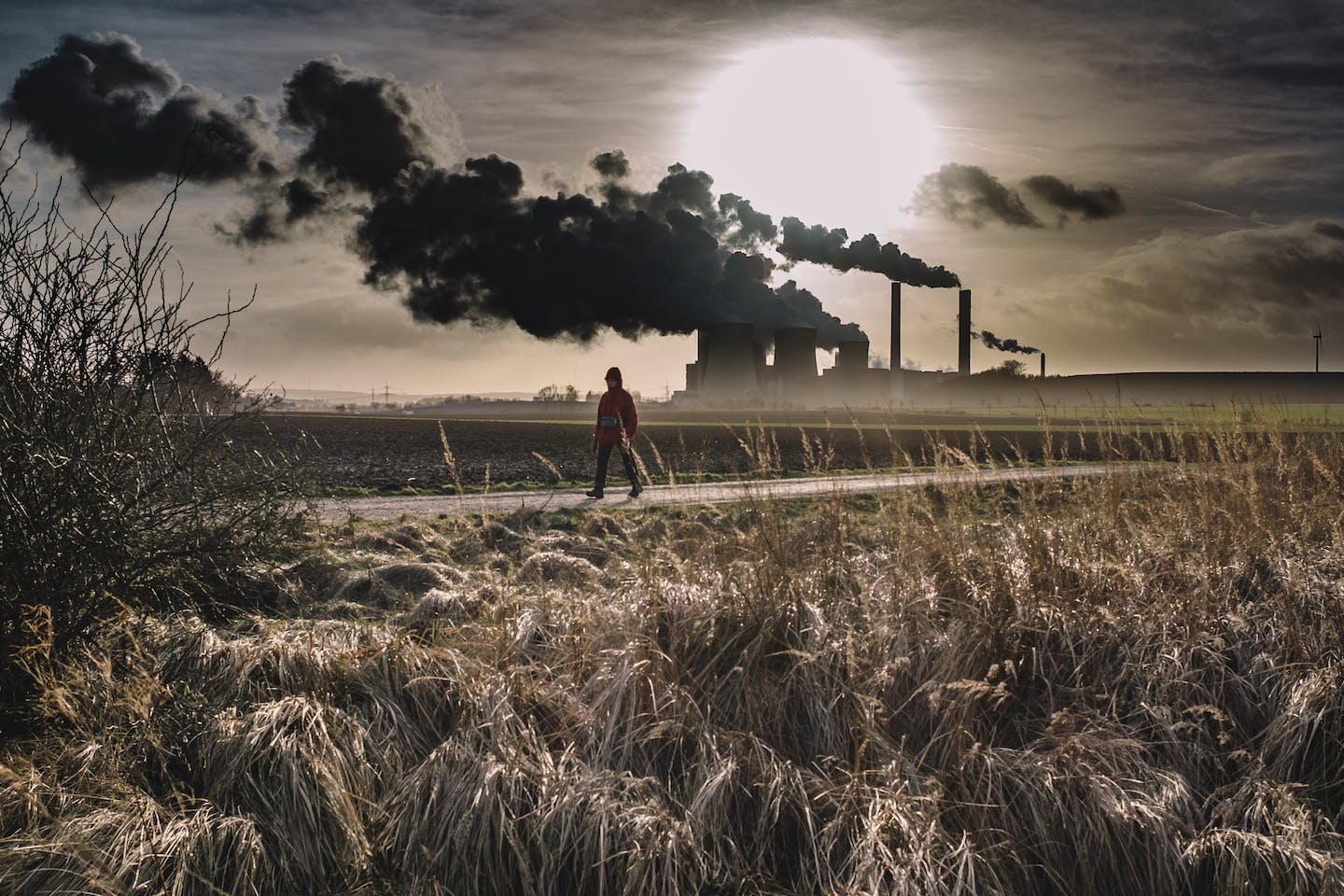 Can your photo turn the tide on climate change?