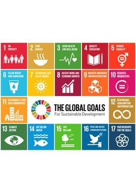 The business case for SDGs and what's needed to achieve them