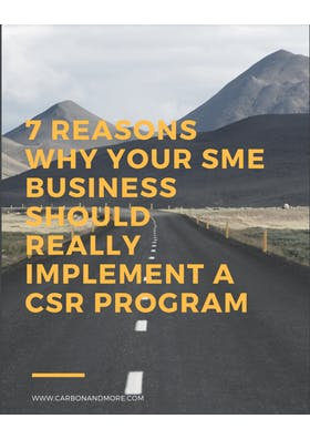 Reasons for Small and Medium-Size Businesses to implement a CSR program.