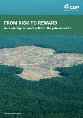 CDP Indonesia Forest Report 2018: From risk to reward - Accelerating corporate action in the palm oil sector