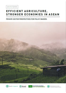 Efficient agriculture, stronger economies in ASEAN