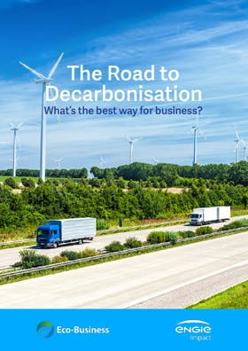 The road to decarbonisation: What's the best way for business?