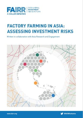 Factory farming in Asia