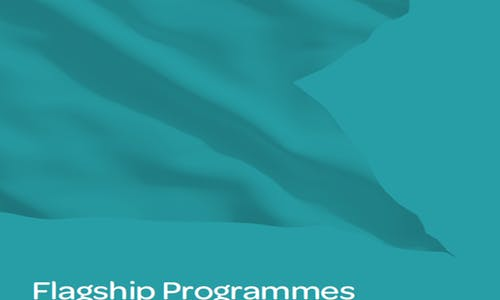 Flagship programmes: Focusing corporate social investment for impact