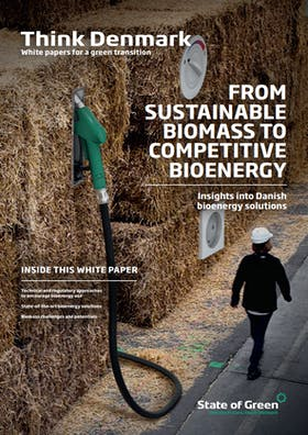 From sustainale biomass to competitive bioenergy