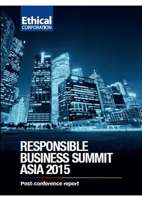 Ethical Corporation's regional leaders in responsible business 2015