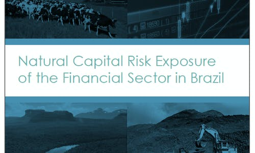 Natural capital risk exposure of the financial sector in Brazil: Full report
