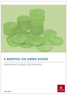 Green bonds briefing: Realizing the potential of the green bond market