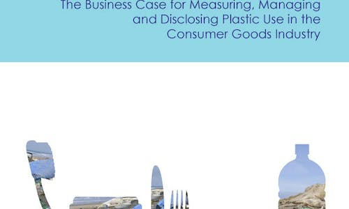 Valuing plastic: The business case for measuring, managing and disclosing plastic use