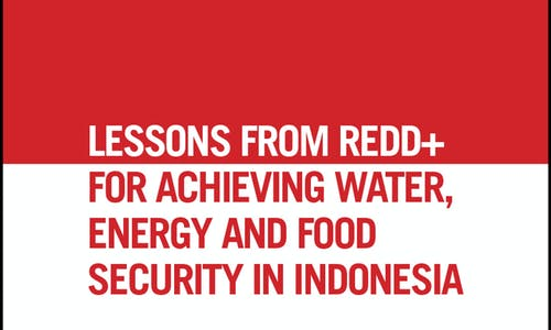 Lessons from REDD+ for achieving water, energy and food security in Indonesia