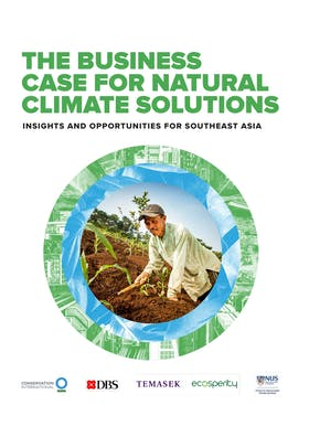 The business case for natural climate solutions: Insights and opportunities for Southeast Asia