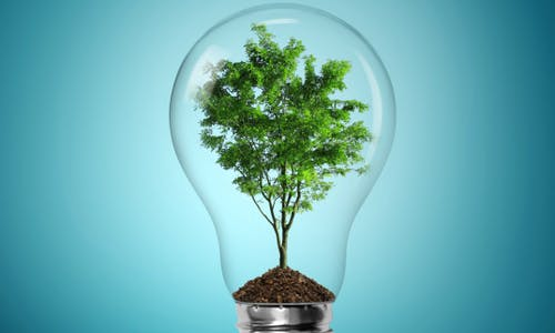 A guide to innovation system analysis for green growth
