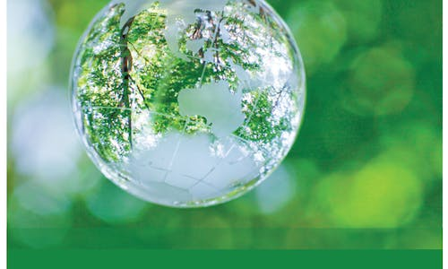 Towards Transparency: Best-practice sustainability reporting in New Zealand 2015