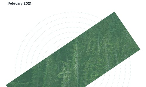 Nature-based solutions in carbon offsetting