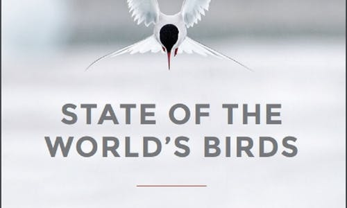 State of the World's Birds 2018—taking the pulse of the planet