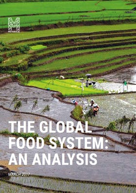 The Global Food System: An Analysis