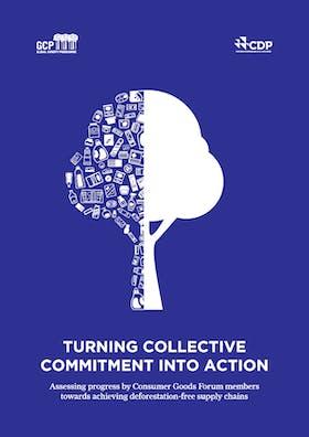 Turning collective commitment into action: Consumer Goods Forum progress towards zero deforestation