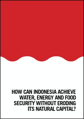 How can Indonesia achieve water, energy and food security?