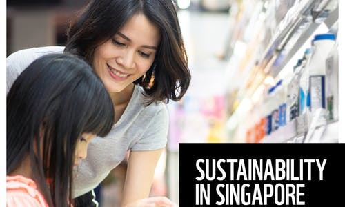 Sustainability in Singapore—consumer and business opportunities