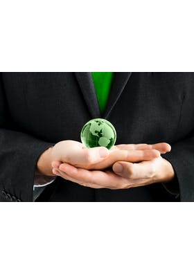 Hot trends in sustainability management for 2015