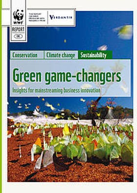 Green game-changers: Insights for mainstreaming business innovation